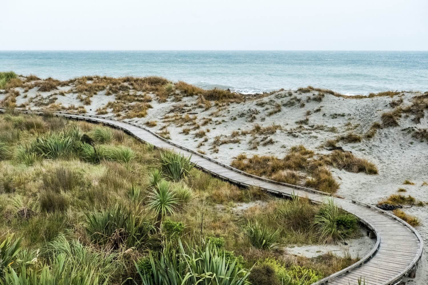 melissa: how to mindfully take a stroll